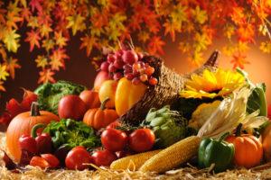 """""""Frutti Antichi"""": rassegna di piante, fiori e frutti dimenticati"""