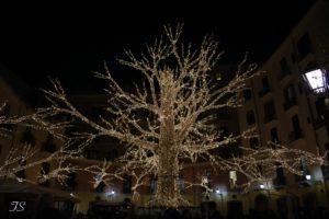 Luci d'Artista 2019, Salerno indossa l'abito più bello per le festività natalizie