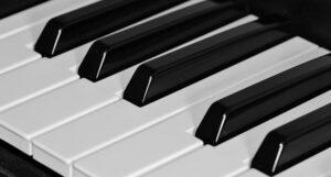 """""""Musiche in Mostra"""", 13 appuntamenti per entrare in contatto con il soundwatching"""